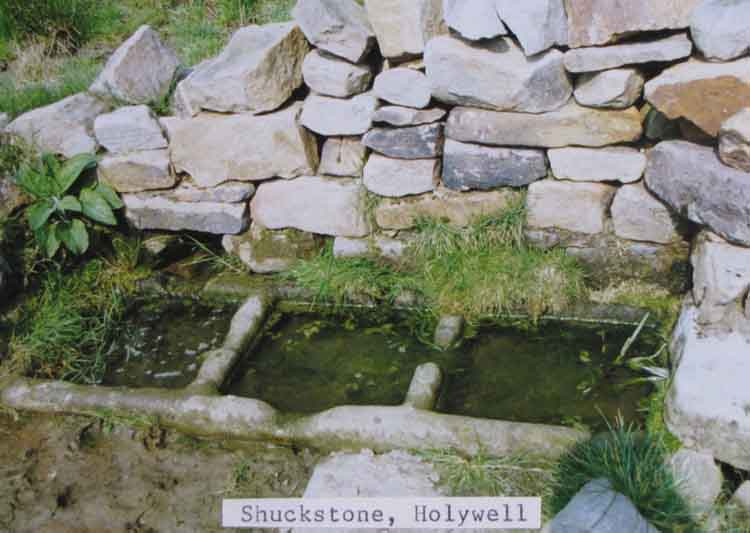 photo of shuckstone holy well